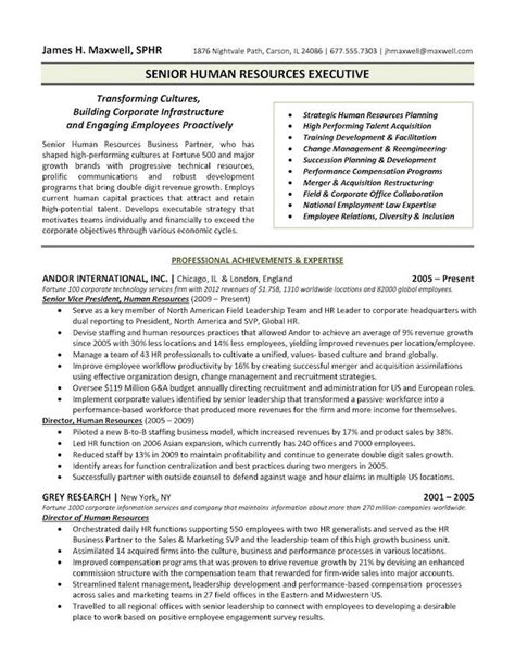 Resume Template Executive by The Top 4 Executive Resume Exles Written By A