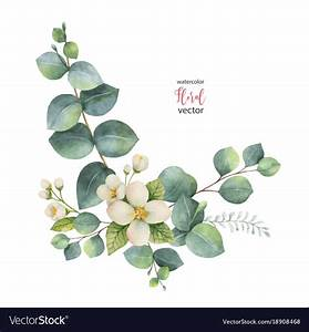 Photo About Watercolor Vector Wreath With Green Eucalyptus ...