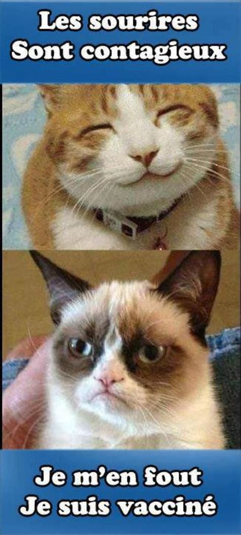 743 Best Juste Pour Rire ! Images On Pinterest Funny