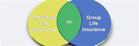 Group Life Insurance Versus Individual Life Insurance. Boston University Electrical Engineering. Simple Ecommerce Software Plumbers In Orlando. Average Cost Of Adult Braces. Business Instant Messaging Solutions. Business Performance Improvement. Best Medical Schools In The Caribbean. Methadone Addiction Symptoms Web Based Erp. At&t Small Business Pay Bill