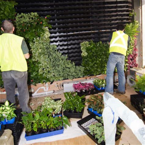 Vertical Garden Construction by Vertical Garden Construction Tropical Plant Rentals