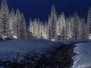 christmas scenery | Free Download HD Snowy Christmas Scene ...