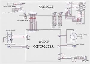 Dc Motor Wiring Diagram For Treadmill
