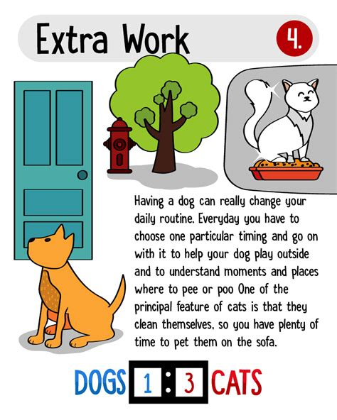 cats better dogs than why infographic displayed reasons awesome want generally alone point there