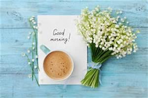 Bonjour La Haut : fleurs du muguet silhouettes noires illustration de vecteur illustration du illustration ~ Medecine-chirurgie-esthetiques.com Avis de Voitures