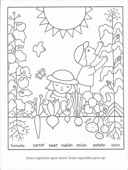 Coloring Pages Gardening Garden Flower Vegetables Vegetable