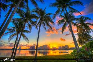 West Palm Beach | Product Categories | Royal Stock Photo ...