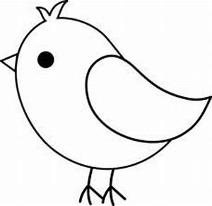 1000+ images about Birdies on Pinterest | Cute birds ...