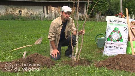 comment planter un arbre en pot fiches conseil en vid 233 o p 233 pini 232 res jacquet