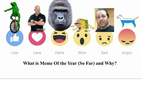 Meme Of The Year - 25 best memes about what is memes what is memes