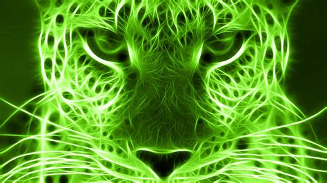Green Animal Wallpaper - free 44 hd green wallpapers for windows and mac