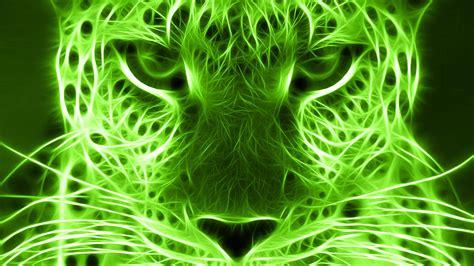Lime Green Wallpapers HD | PixelsTalk.Net