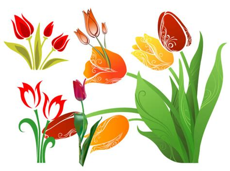 tulip vector graphic graphic hive