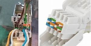 Lan Kabel Belegung : richtige belegung rj45 stecker internet lan lan kabel ~ A.2002-acura-tl-radio.info Haus und Dekorationen