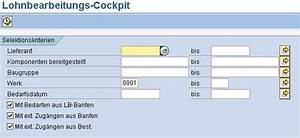 Sap Lieferschein Anzeigen Transaktion : neue transaktion von sap zur lohnbearbeitung lohnbearbeitungscockpit ~ Themetempest.com Abrechnung