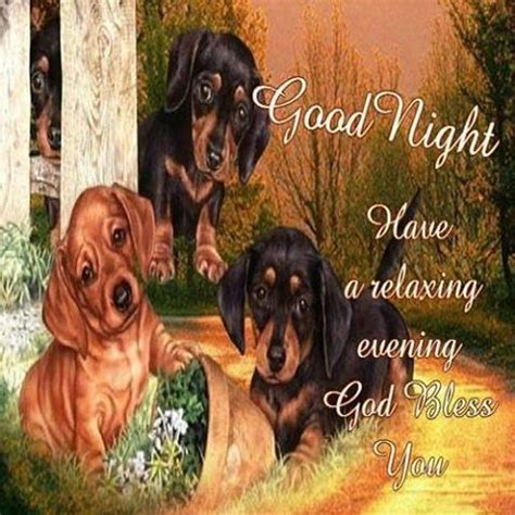 goodnight   relaxing evening pictures