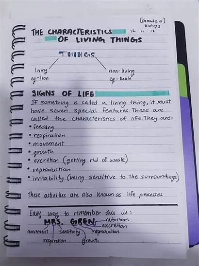 Biology Notes Living Characteristics Amino