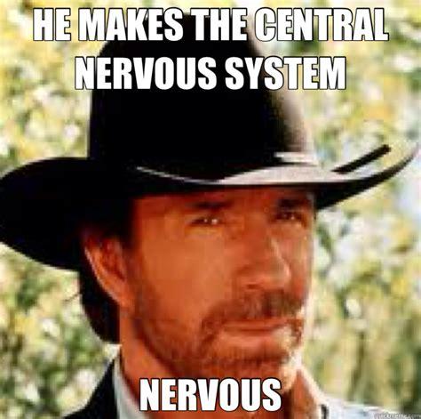 Nervous Meme - he makes the central nervous system nervous chuck norris