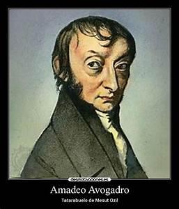 Free Download Program Avogadro Program Wiki