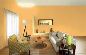 50 beautiful wall painting ideas and designs for living for House interior painting ideas india