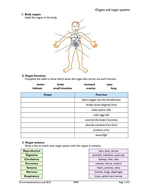 ks3 science worksheets free printables pdf worksheet