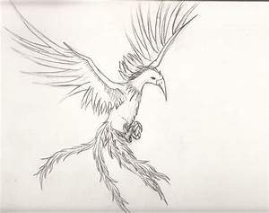 Phoenix Bird Study 1 by AnarchyArtistBuddy on DeviantArt