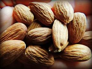 That's Nuts! A Complete Guide to Soaking Nuts and Seeds Dietary Proteins