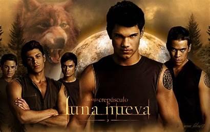 Twilight Pack Series Wolf Luna Jacob Nueva
