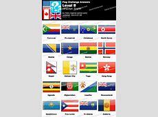 Flag Challenge Level 8 Game Solver