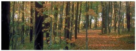 wildlife walkway ontario trails council