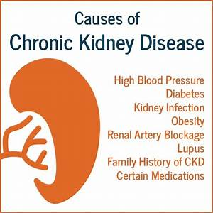 Causes of Chronic Kidney Disease