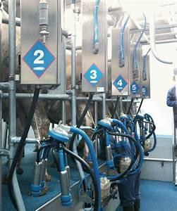Herringbone Milking Parlours
