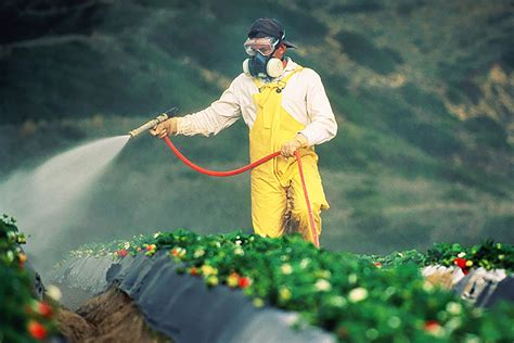 todays pesticides  trouble  tomorrows children