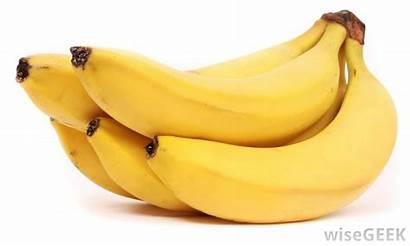 Banana Bananas Period Foods Bunch Diet Eat