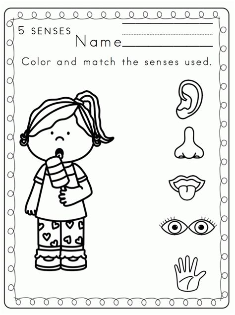 coloring pages  senses coloring home