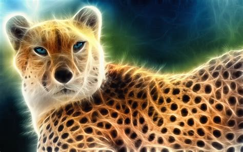 Animals Wallpapers Cool Animals by Cool Animal Backgrounds 66 Images