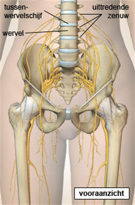 Been pijn oorzaken, symptomen, behandeling - wat zijn