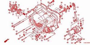 Honda Foreman 450 4x4 Parts Diagram  U2022 Downloaddescargar Com
