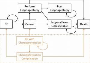 Esophageal Cancer Simulator