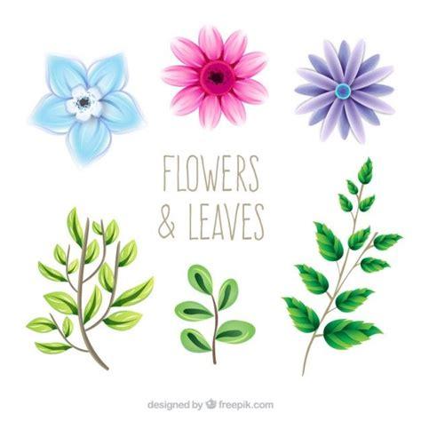Bonitas flores y hojas dibujadas a mano Vector Gratis