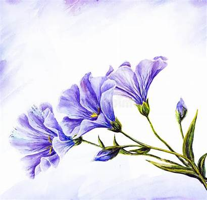 Watercolor Wildflowers Painting Card Royalty Freeart Artwork