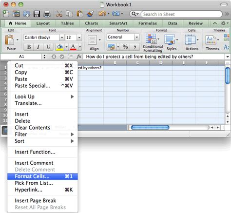 ms excel 2011 for mac protect a cell