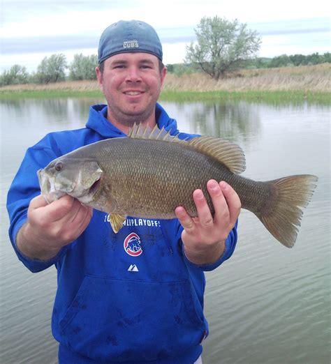 bass fishing wikipedia