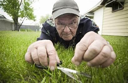 Grass Cutting Scissors Mowing Maintenance Management Landscape