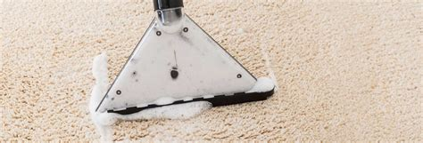 Best Carpet Cleaner Buying Guide Carpetright Black Friday Deals Kijiji Toronto Carpets Vomit Smell Out Of Carpet Brandon Downey Cleaning Granville Cleaners Wow Auckland Jones Newland Nc
