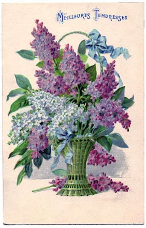 antique graphic beautiful basket  lilacs