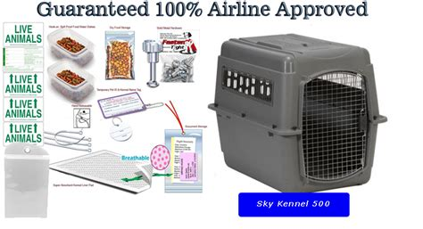 airline approved crate amazon sky kennel 500 all in one airline pet travel package