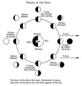 Moon Phase Lunar Eclipse Diagram