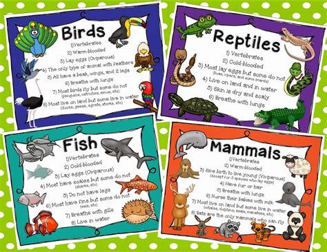 animal classification animals animal classification