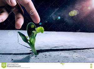 Life on other planets stock image. Image of plant, finger ...